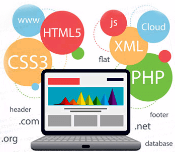 web application development company in pune